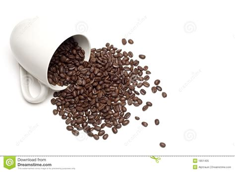Spills The Beans by Spill The Beans Royalty Free Stock Photo Image 1851405