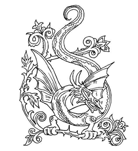 coloring pages for adults dragon dragon adult coloring pages