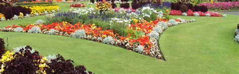 fiori bergamo ingrosso piante da giardino bergamo