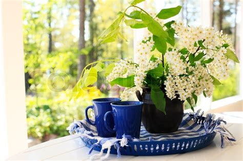 Coffee tray and bird cherry flowers in sunny morning light   Stock Photo   Colourbox