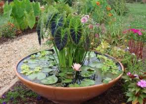 ideas for container gardens pebble path water gardens container ideas container