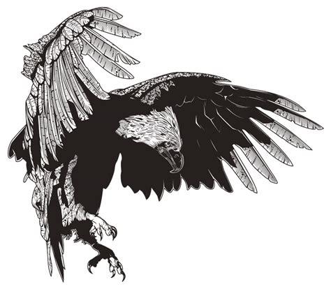 philippine eagle tattoo designs banog great philippine eagle by iamaxiom on deviantart