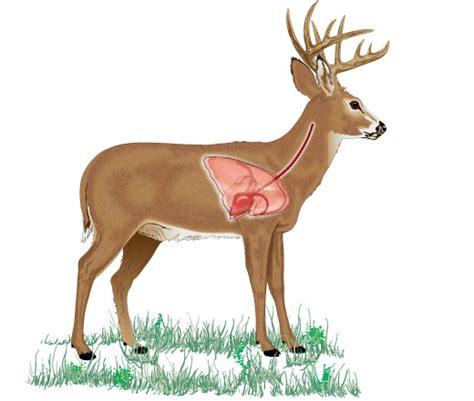 understanding game anatomy  hunter edcom