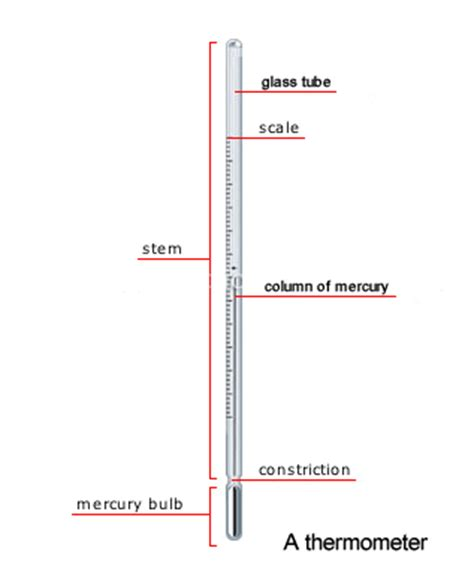 clinical thermometer labeled diagram heat and temperature