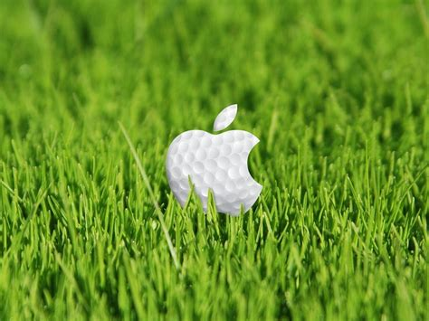apple wallpaper grass apple grass wallpapers wallpaper cave
