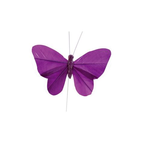 papillons d 233 coratifs sur tige bo 238 te drag 233 es