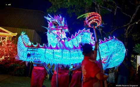 safari singapore new year a paws perous lunar new year 2018 at singapore zoo