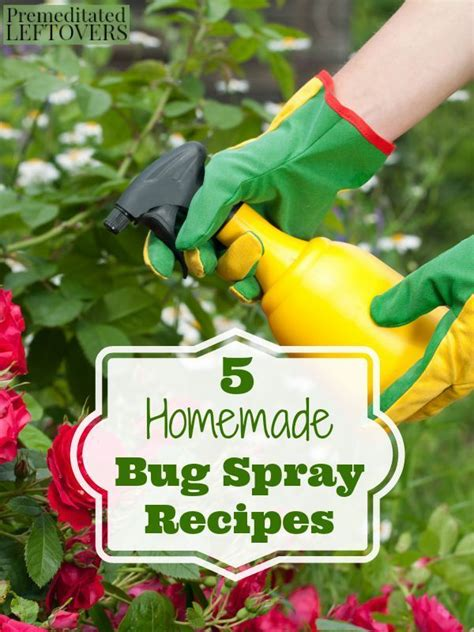 Bug Repellent For Vegetable Garden 5 Bug Spray Recipes Gardens Bug Spray Recipe