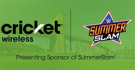 Sweepstakes Cricket - summerslam sweepstakes
