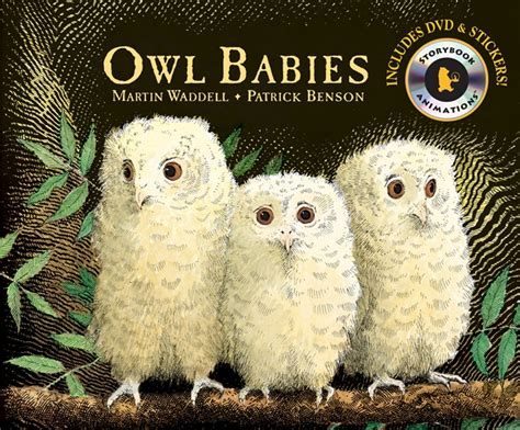 owl picture books owl babies by martin waddell book storybook animation