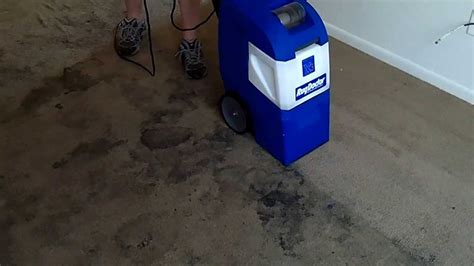 how to let carpet after rug doctor saving a carpet with a rug doctor x 3
