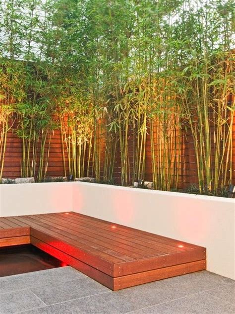 16 bamboo tree decorations for home decor thar are both 25 best ideas about bamboo garden on pinterest bamboo