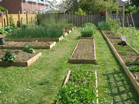 pictures of backyard vegetable gardens raised garden beds make gardening easier