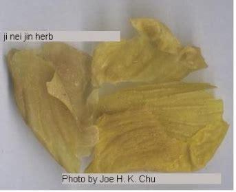 Ji Nei Jin ji nei jin herb picture 雞内金飲片圖 complementary and alternative healing
