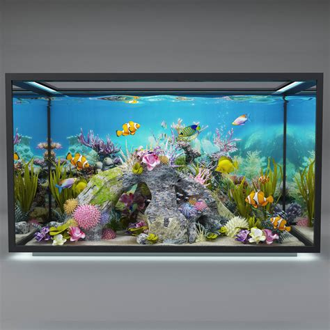 modern aquarium  model cgtrader