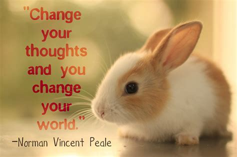Inspirational Thoughts 17 Inspirational Quotes About