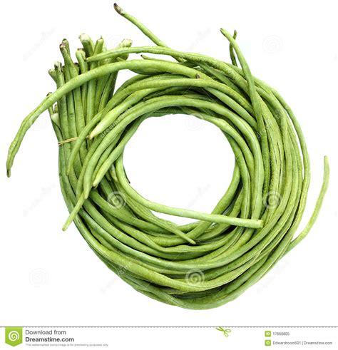 String Beans Clip - string bean clipart clipart suggest