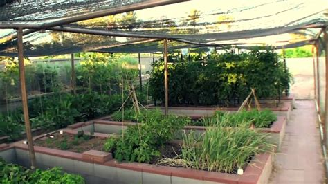 Backyard Cabana Vegetable Garden In Phoenix Youtube