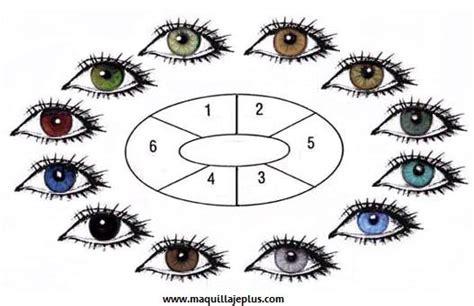 human eye color chart sombras que resaltan tus ojos