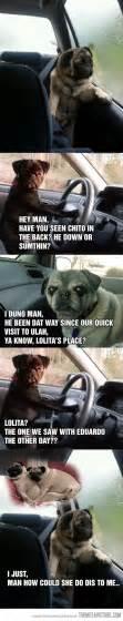 Sad Pug Meme - funny sad thinking pug meme