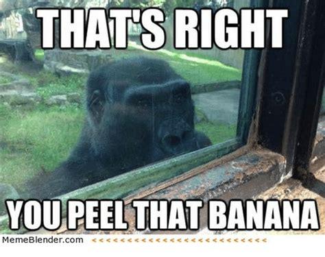 Banana Meme - thats right you peel that banana meme blender com c s
