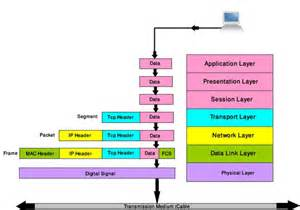 most common questions on osi model rumy it tips