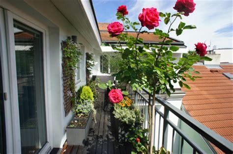 flowers for balcony garden 9 flower plants for your balcony garden