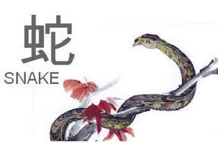 Sho Kuda Di Supermarket ramalan shio tahun ular air ramalan tahun 2013 lucu unik aneh