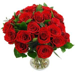 roses delivery send 24 roses 2 dozen roses delivered next day with free delivery