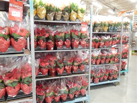 fascinating home depot 4th of july sale plan home