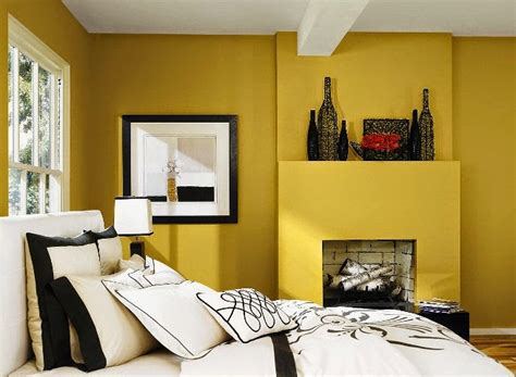 best wall interior exterior wall painting color combination