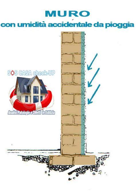 muffa pareti interne soluzioni umidit pareti simple soluzione dopo dispositivo aquapol