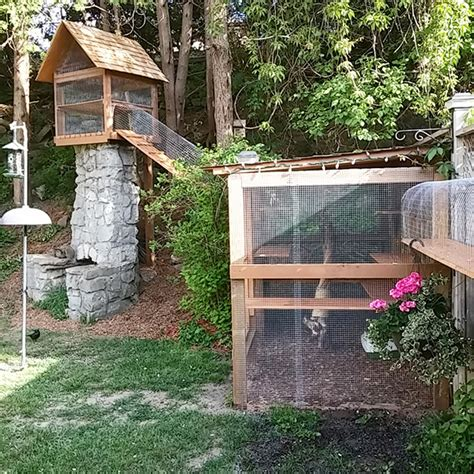 diy outdoor tree easy diy cat enclosure cuckoo4design