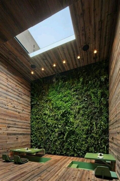 Living Wall Indoor 16 Peaceful Indoor Living Wall Designs For Any Home Digsdigs
