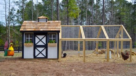 build backyard chicken coop how to build a backyard chicken coop homesteading