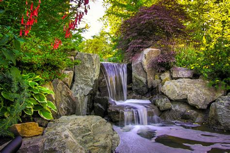 Landscaping Ideas For Backyards On A Budget Plants For A Japanese Garden The Tree Center