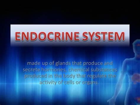 Endocrine System 1 Authorstream Endocrine System Powerpoint