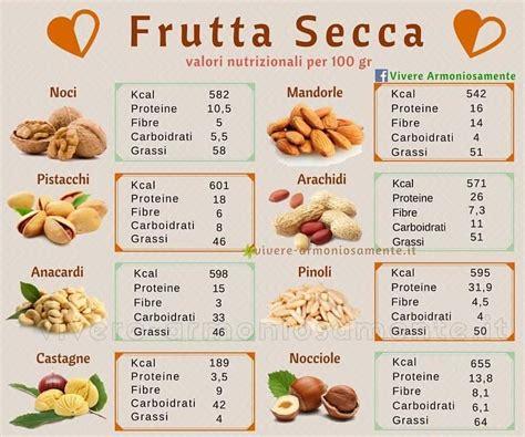 alimentazione senza proteine animali potere nutrizionale della frutta secca un alternativa