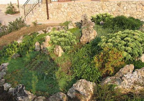Rock Garden Design Tips 15 Rocks Garden Landscape Ideas Rock Garden Show