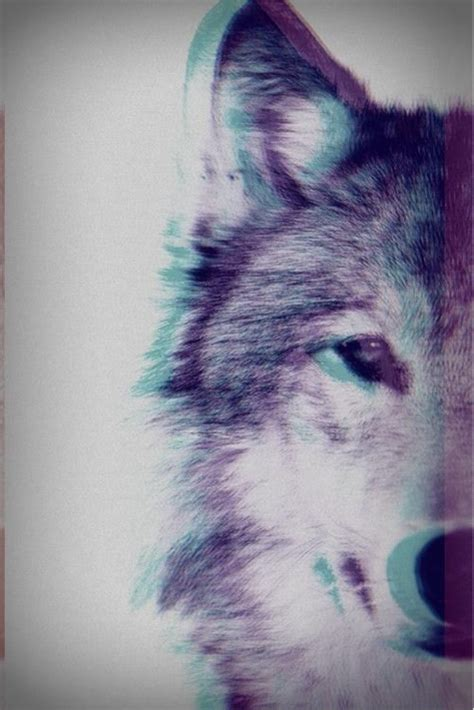 wallpaper tumblr wolf 3d wolf pictures photos and images for facebook tumblr