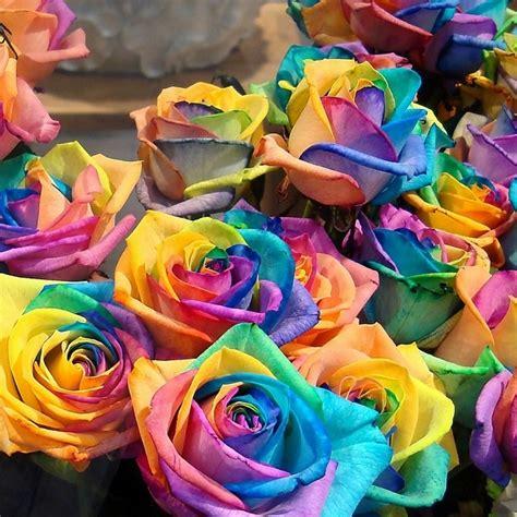 Colorful Rainbow Home Decor Ladyboom Diy Rainbow Roses Tutorial Beesdiy