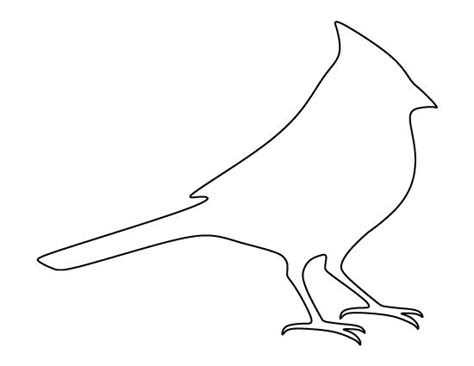 cardinal coloring pages preschool cardinal pattern use the printable outline for crafts