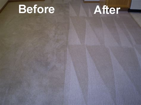 upholstery cleaning orlando commercial carpet cleaning orlando fl citi cleaning