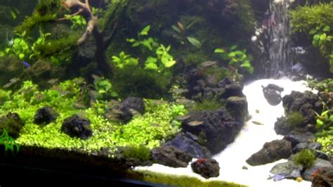 aquascape waterfall under water waterfall aquascape youtube