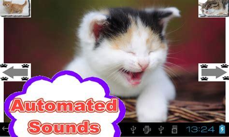 cat voice auto cat voice cats it appstore per android