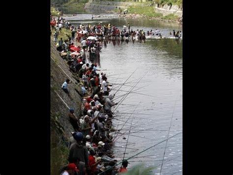 Bibit Ikan Nila Di Bekasi mancing bareng di setu pengasinan doovi