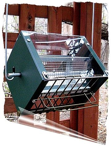 2018 squirrel proof bird feeders chickadee to cardinals