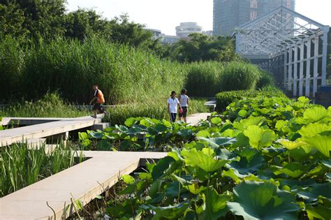 Edge Landscape Architecture Zhongshan Shipyard Park Turenscape 19 The Terraced Lake