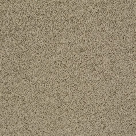 home decorators collection carpet sle braidley in color dried herbs 8 in x 8 in sh home decorators collection braidley s color upscale 12