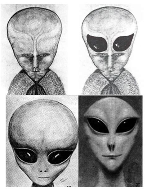 types of extraterrestrials extraterrestrial inquisition